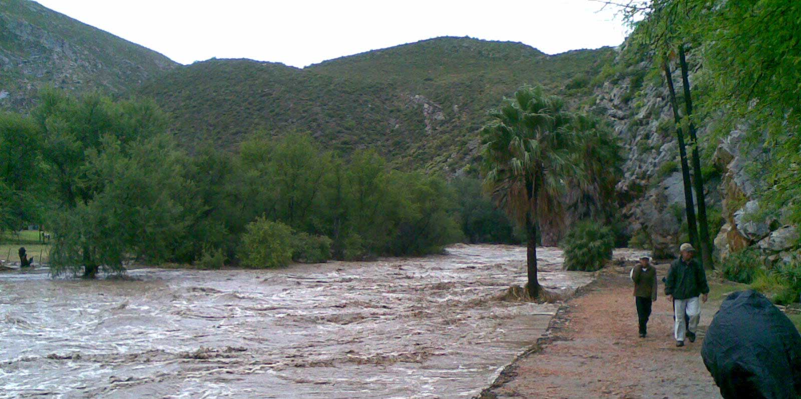2008 flood Montagu hanging bridge